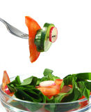Salada da mola Fotografia de Stock Royalty Free
