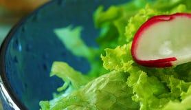 Salada da mola imagem de stock royalty free