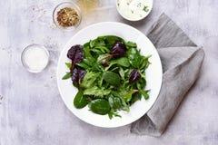Salada da mola com folhas verdes Fotos de Stock