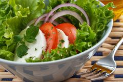 Salada da mussarela Foto de Stock Royalty Free
