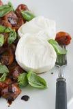 Salada da mussarela e do tomate Fotografia de Stock Royalty Free