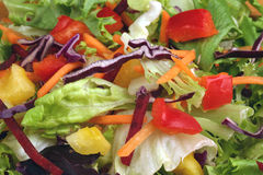 Salada da pimenta Imagens de Stock Royalty Free