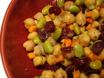 Salada da proteína do vegetariano Imagens de Stock Royalty Free