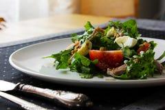 Salada da rúcula e da carne do tomate Fotografia de Stock