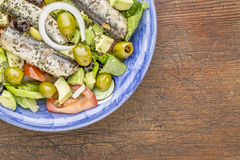 Salada da sardinha Foto de Stock Royalty Free