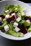Salada das beterrabas do feta Imagens de Stock