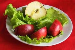 Salada de Apple e de chicória em uma placa Fotografia de Stock Royalty Free