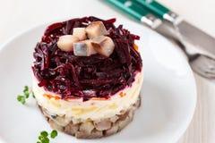Salada de arenques do russo Imagem de Stock