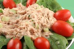 Salada de atum Imagens de Stock Royalty Free