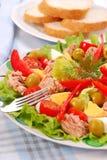 Salada de atum imagem de stock