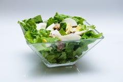 Salada de atum Imagem de Stock Royalty Free