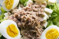 Salada de atum Foto de Stock