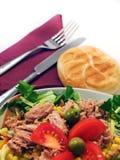 Salada de atum foto de stock royalty free