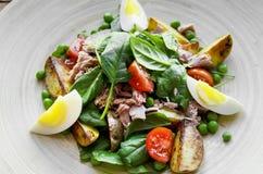 Salada de atum com alface, ovos e tomates Imagens de Stock Royalty Free