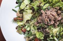 Salada de atum com tomates de cereja 5 Imagem de Stock Royalty Free