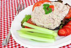 Salada de atum de Healty Fotografia de Stock Royalty Free