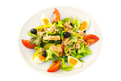 Salada de atum na placa Foto de Stock