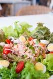 Salada de atum picante foto de stock