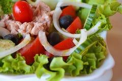 Salada de atum vegetal misturada fresca Imagem de Stock