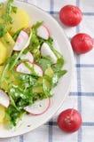 Salada de batata imagem de stock royalty free