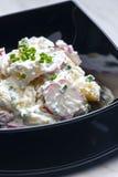 Salada de batata da mola imagem de stock