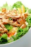 Salada de Caesar Fotografia de Stock