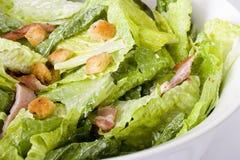 Salada de Caesar Fotos de Stock