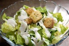 Salada de Caesar com fritos de pão fotografia de stock