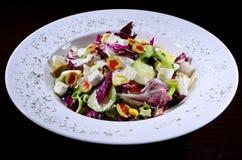 Salada de Caesar com galinha Fotografia de Stock Royalty Free