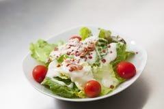 Salada de Caesar com molho branco Imagem de Stock