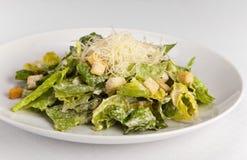 Salada de Caesar com queijo e pão torrado Fotografia de Stock Royalty Free