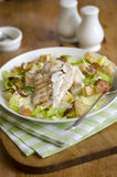 Salada de Caesar da galinha Fotos de Stock Royalty Free