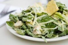 Salada de Caesar do gourmet fotografia de stock