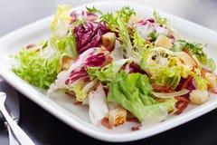 Salada de Caesar verde Fotografia de Stock Royalty Free