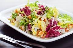 Salada de Caesar verde Fotos de Stock Royalty Free