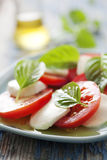 Salada de Caprese Fotografia de Stock Royalty Free