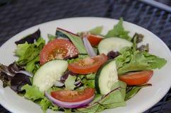 Salada de casa Foto de Stock