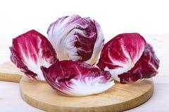 Salada de Chioggia Fotos de Stock