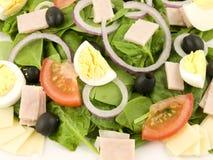 Salada de Cobb imagens de stock royalty free