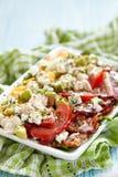 Salada de Cobb foto de stock royalty free