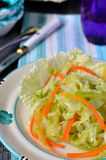 Salada de couve chinesa. Close-up. Imagem de Stock