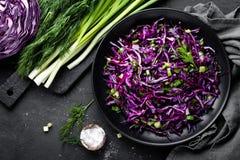 Salada de couve vermelha com a cebola verde e aneto frescos Prato de vegetariano Imagem de Stock Royalty Free