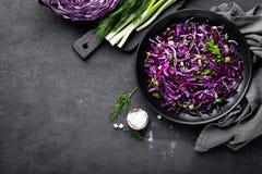 Salada de couve vermelha com a cebola verde e aneto frescos Prato de vegetariano Fotos de Stock Royalty Free