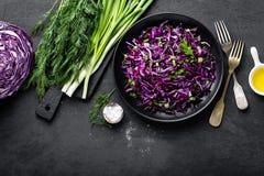 Salada de couve vermelha com a cebola verde e aneto frescos Prato de vegetariano Fotografia de Stock