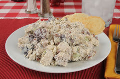 Salada de frango Imagem de Stock Royalty Free