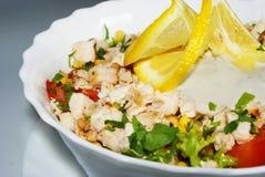 Salada de frango imagens de stock royalty free