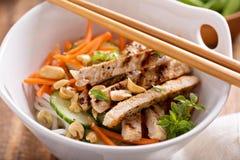 Salada de frango asiática da culinária imagem de stock