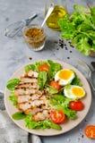 Salada de frango com hortaliças e tomates de cereja fotos de stock royalty free