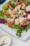 Salada de frango frito imagem de stock
