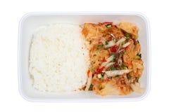 Salada de frango grelhada picante Imagem de Stock